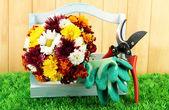 Sekatory z kwiatami w polu na tle ogrodzenia — Zdjęcie stockowe