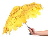 Humans hand holding maple leaves umbrella isolated on white — Stock Photo