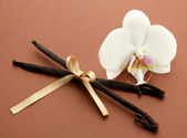 Vanilla pods with flower, on brown background — Stock Photo