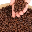 Coffee beans in hand close-up — Stock Photo #17619209