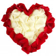 Beautiful heart of white rose petals surrounded by red petals isolated on white — Stock Photo #17619241