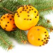 Christmas composition with oranges and fir tree, isolated on white - 图库照片