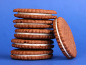 Chocolate cookies with creamy layer on blue background — Stock Photo