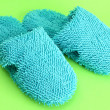 Bright slippers, on green background — Stock Photo