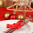 Serving Christmas table close-up - Lizenzfreies Foto
