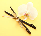 Vanilla pods with flower, on yellow background — Stock Photo