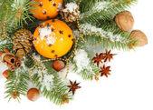 Composición de navidad con naranjas y abeto, aislado en blanco — Foto de Stock