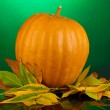 Ripe orange pumpkin with yellow autumn leaves on green background — Stock Photo #17843993