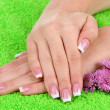 Woman hands with french manicure and flowers on green towel — Stock Photo
