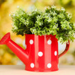 Decorative flowers in watering can on bright background — Stock Photo