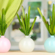 Cactuses in vases on windowsill — Stock Photo #17847551