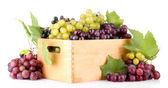 ассортимент спелый сладкий виноград в деревянный ящик, изолированные на белом — Стоковое фото