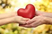 Rött hjärta i kvinnan och manen händer, på grön bakgrund — Stockfoto
