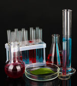 Test-tubes and green leaf tested in petri dish, isolated on black — Foto de Stock