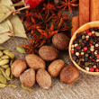 Nutmeg and other spices on sackcloth background — Stock Photo #18037843