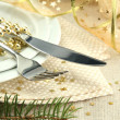 Stock Photo: Beautiful christmas setting, close up