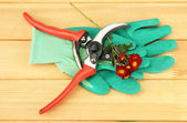 Secateurs with flower on wooden background — ストック写真