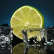 Ice cubes with lime on darck blue background — Stock Photo #18052089