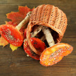 Red amanitas in basket, on wooden background — Stock Photo #18064597