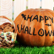 Halloween pumpkin on grass on light background - Stockfoto