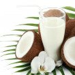Coconuts with glass of milk, isolated on white - Stock Photo
