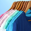 Variety of casual shirts on wooden hangers,on blue background — Stock Photo #18133539