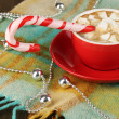 Cup of coffee with holiday candy on plaid close-up — Stock Photo #18133561
