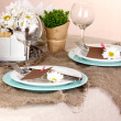 Rustic table setting — Stock Photo #18169989
