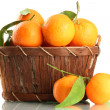 Ripe sweet tangerine with leaves in basket, isolated on white — Stock Photo