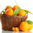 Ripe sweet tangerine with leaves in basket, isolated on white — Stock Photo #18170887