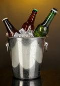 Beer bottles in ice bucket on darck yellow background — Stock Photo