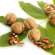 Walnuts with green leaves, isolated on white — Stock Photo