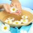 Woman hands with wooden bowl of water with flowers, on blue background — Stock Photo