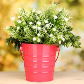 Decorative flowers in pot on bright background — Stock Photo