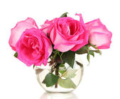 Beautiful pink roses in vase isolated on white — Stock Photo