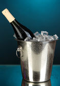 Bottle of wine in ice bucket on darck blue background — Stock Photo