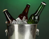 Beer bottles in ice bucket on darck green background — Stock Photo