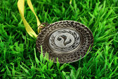 Silver medal on grass background — Stock Photo