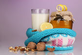 Healthy ingredients for strengthening immunity on purple background — Stock Photo