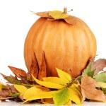 Ripe orange pumpkin yellow autumn leaves isolated on white — Stock Photo #18319397
