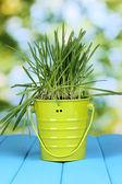 Grama verde no balde na mesa de madeira no fundo brilhante — Fotografia Stock