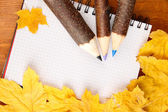 Colorful wooden pencils with autumn leafs on wooden table — Stock Photo