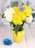 Bella crisantemo nel secchio sul tavolo di legno su sfondo della finestra — Foto Stock