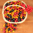 Colorful autumn berries in wicker basket on wooden background close-up - Foto de Stock