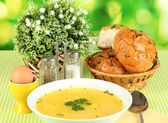 Fragrant soup in white plate on green tablecloth on natural background close-up — Stock Photo