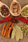 Nutmeg and other spices on sackcloth background — Stock Photo