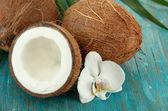 Noix de coco avec feuilles et fleurs, sur fond en bois bleu — Photo