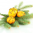 Christmas composition with oranges and fir tree, isolated on white — Stock Photo