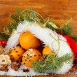 Christmas composition with oranges and fir tree in Santa Claus hat — Stock Photo