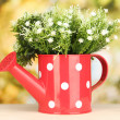 Decorative flowers in watering can on bright background — Stock Photo #18574035